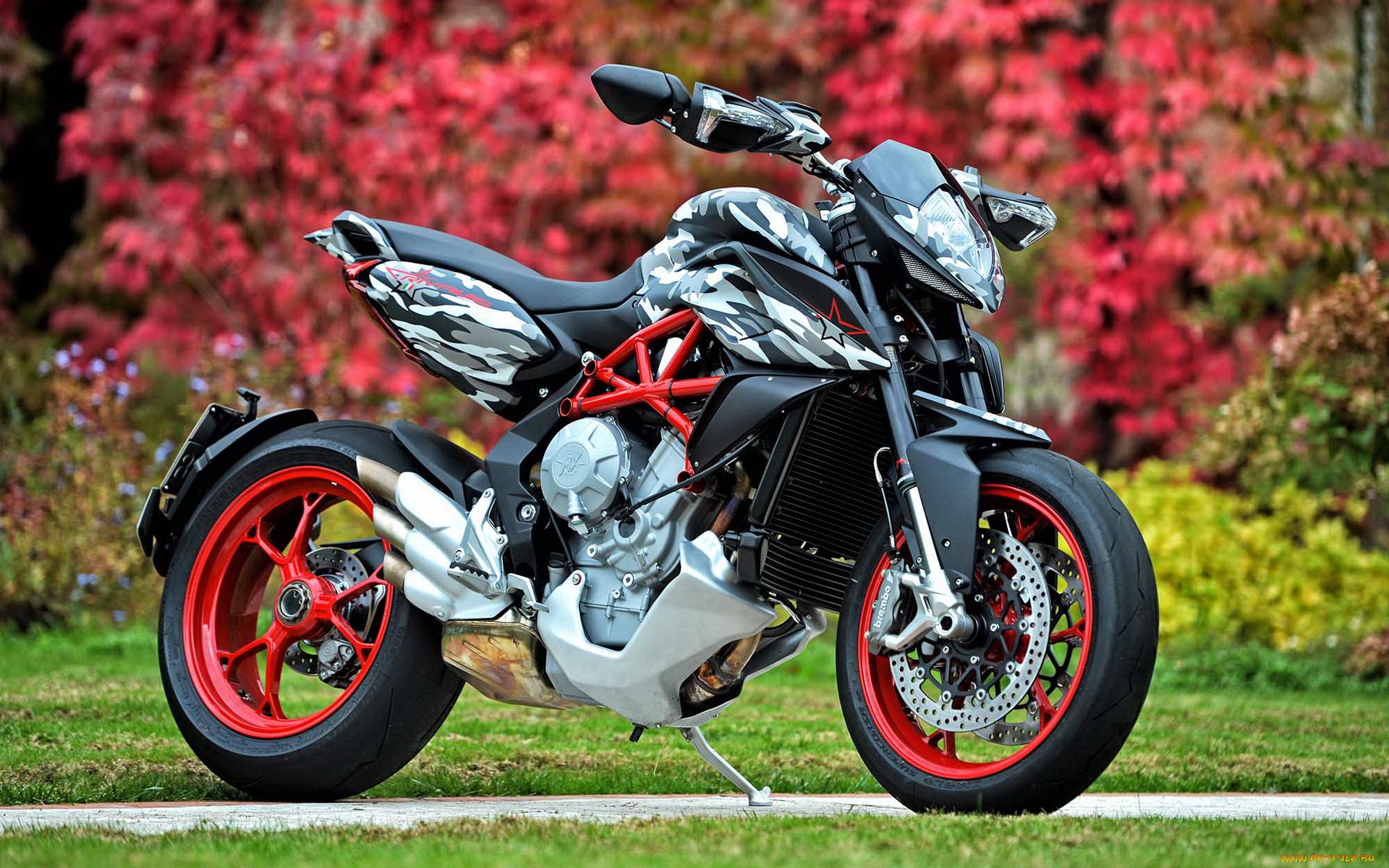 ёлки смотреть крутые мотоциклы фото несколько лет
